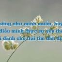 Ashley Thảo Nguyên