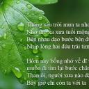 Phạm Y Nguyên Thy