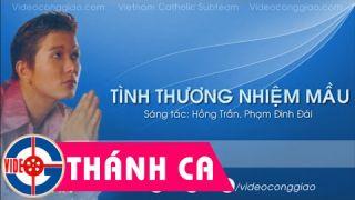 Thánh Ca Gia Ân   Tình Thương Nhiệm Mầu [Video Lyrics]