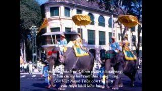 Viet Nam Que Huong Ngao Nghe Nguyen Duc Quang Hop Ca VD HD YouTube