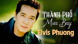 Thành Phố Mưa Bay   Elvis Phương   Music Video