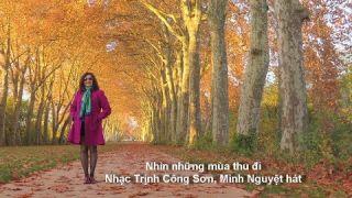 Nhìn những mùa thu đi - Nhạc Trịnh Công Sơn, Minh Nguyệt hát, Photos Minh Nguyệt