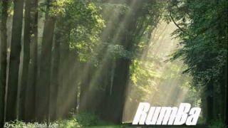 Nhạc Không Lời Cho Buổi Sáng Tuyệt Phẩm Rumba