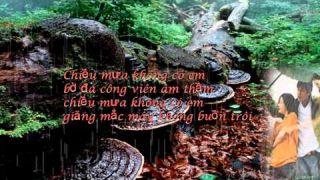Mùa Thu Trong Mưa, tiếng hát Ngọc Lan, Trường Sa sáng tác