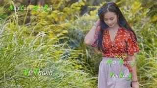 Nhặt Cánh Sao Rơi [Vũ Thành] Mai Hương & Thu Vàng (4K)