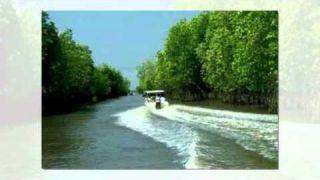Dòng Sông Quê Hương-Ngọc Lan