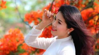 Mê Khúc (Anh Thoa) Kim Bích