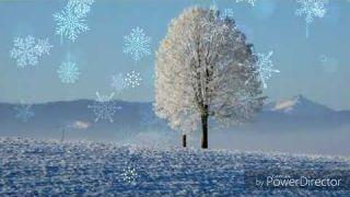 Mừng Lễ Giáng Sinh An Lành