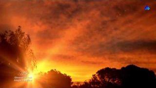 ✿ ♡ ✿ GIOVANNI MARRADI - Adagio in D Minor