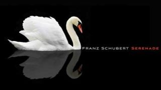 Franz Schubert: Serenade, D 957 No 4
