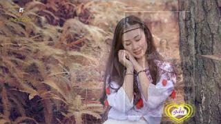 BỐN MÙA THAY LÁ - Tiếng hát : THÁI HÒA