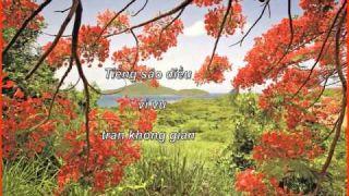 Mùa Hè Tới - Phạm Anh Dũng - NTH
