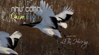 Như Cánh Chim Trời [Lê Tín Hương] Duy Trác (4K) - YouTube