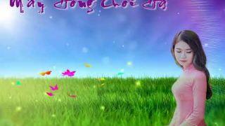 MÂY HỒNG CUỐI HẠ - Nguyễn Thanh Cảnh - Trình Bày: Quốc Duy