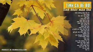 Tình Ca Để Đời 6 - Tình Khúc Mùa Thu - Những ca khúc trữ tình hay nhất về mùa thu