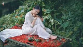 HƯƠNG TÌNH CŨ -Thanh Sơn -Hoàng Kim Yến -HD46