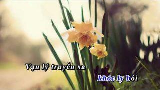 NỖI LÒNG CHINH PHỤ 3 / Minh Giang/NHT/NVT/Nguyên Trường