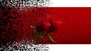 Julio Iglesias - Crazy (lyrics)