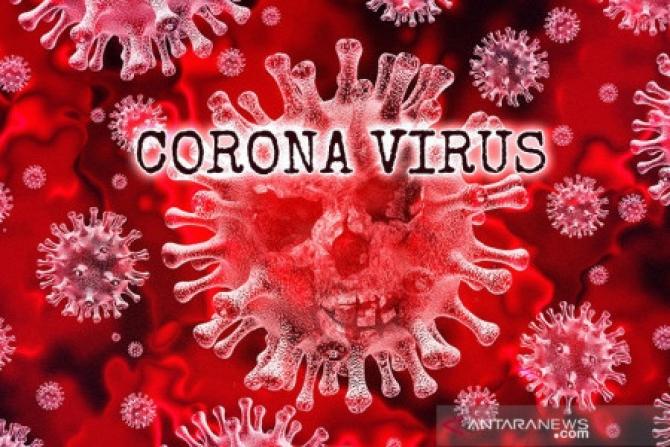 Những gì bạn cần biết về virus corona gây ra