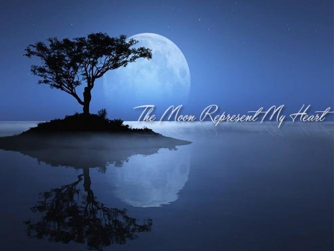 Ánh trăng nói hộ lòng tôi