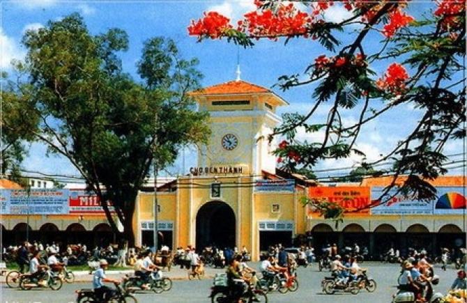 Một Thoáng Sài Gòn – Hoa Xương Rồng