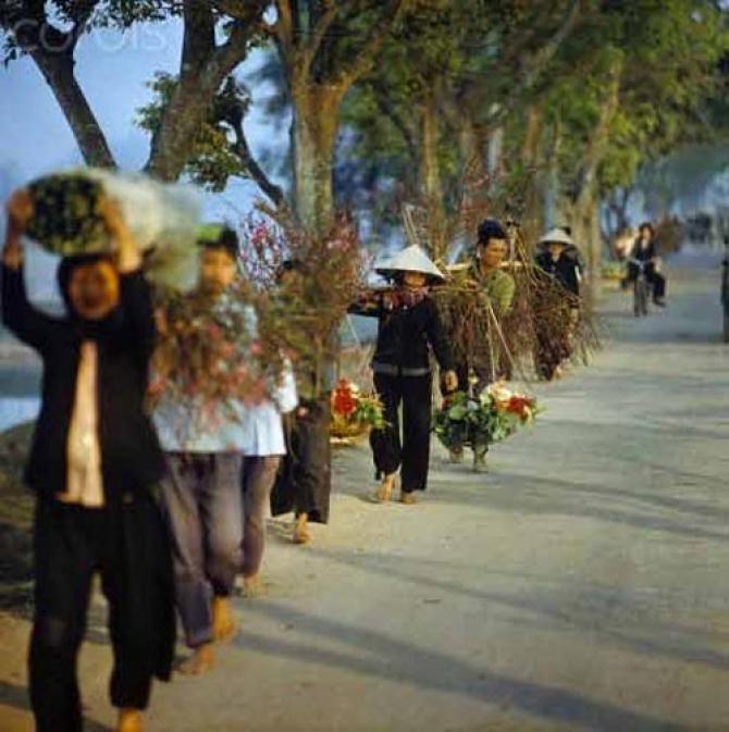 Tản Mạn Về Tết - Nam Sơn Trần Văn Chi