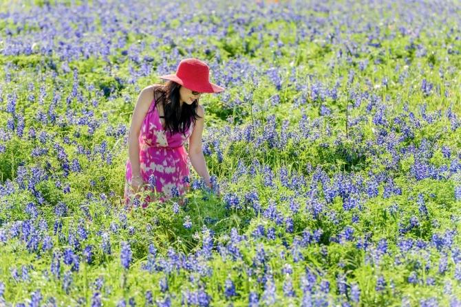 Bluebonnet và Tử Đinh Hương-Lilac