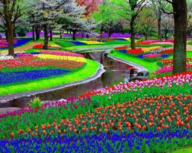 Thiên đường hoa ở Nhật Bản