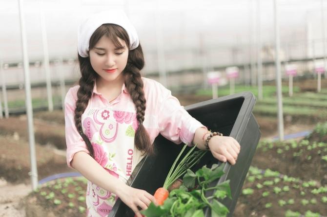 Ghé thăm 2 khu vườn cây trái rau sạch đẹp